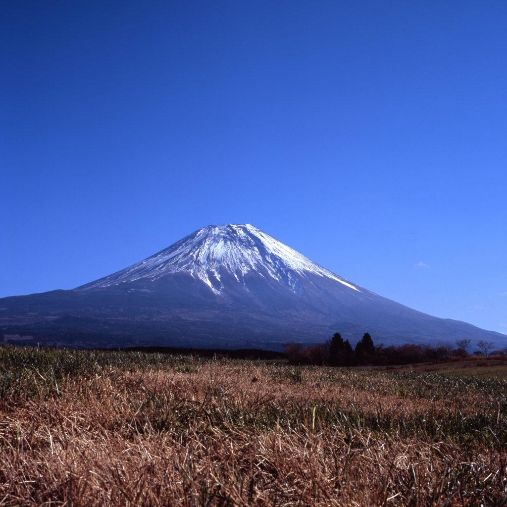 富士フィルム Velvia 100F 朝桐高原 富士山